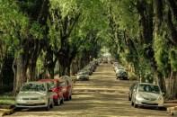 Rua-Gonçalo-de-Carvalho_4