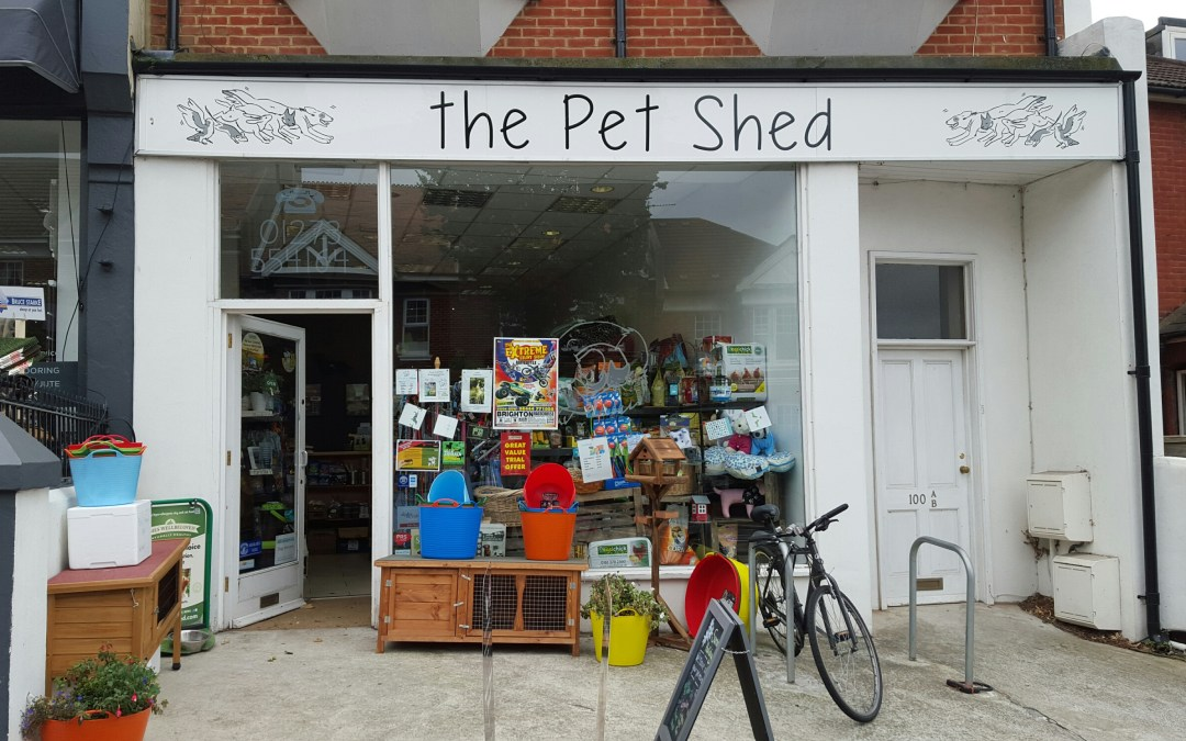 Industry Insider: The Pet Shed
