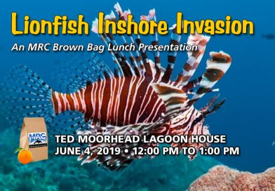 June 4 Brown Bag Lunch: Lionfish Inshore Invasion