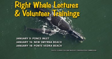 Right Whale Lecture & Volunteer Trainings