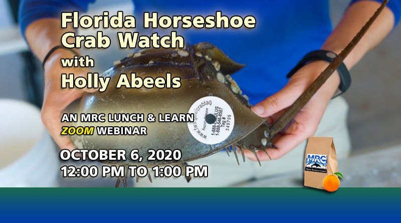 Oct. 6 Webinar: Horseshoe Crab Watch