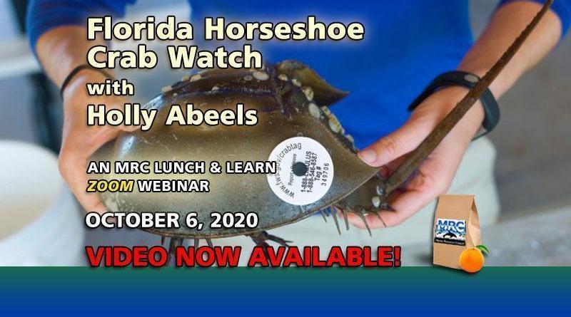 Oct. 2020 Webinar: Florida Horseshoe Crab Watch