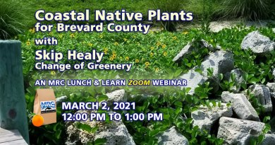 Coastal Native Plants for Brevard County Webinar