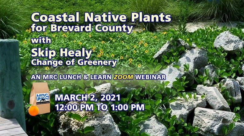 Coastal Native Plants for Brevard County Webinar