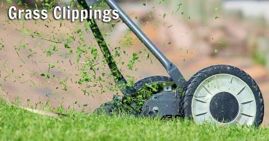 Grass Clippings: Handle With Care!