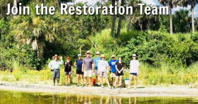 Join the Restoration Team