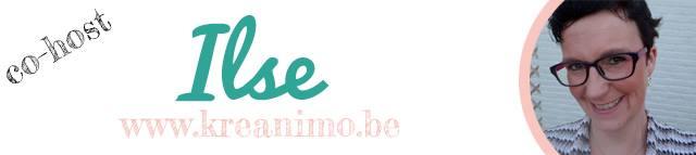 blogfeestje Ilse