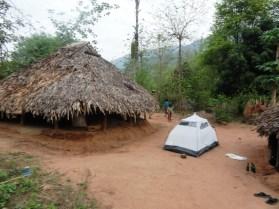 Eastern-Ghats-King-Cobra-Habitat-5