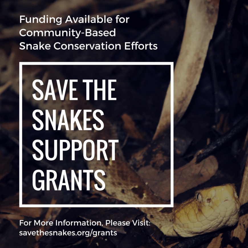 snake conservation funding, grant