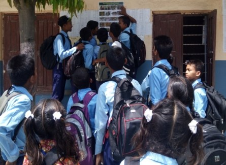 Students looking the posters at the notice board with information on snakes in Nepal 2