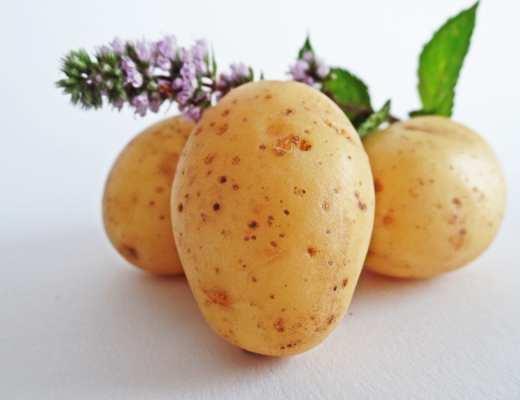 Pommes de terre - Pexel