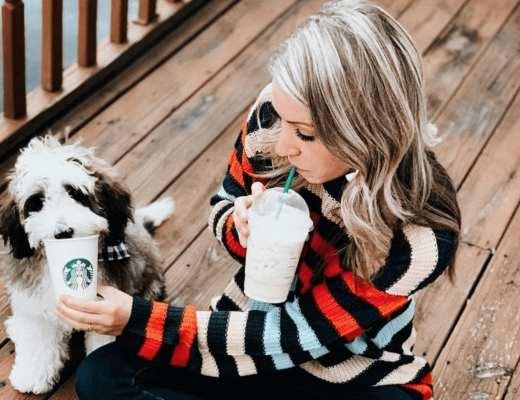 Starbucks chien Katie lever Instagram