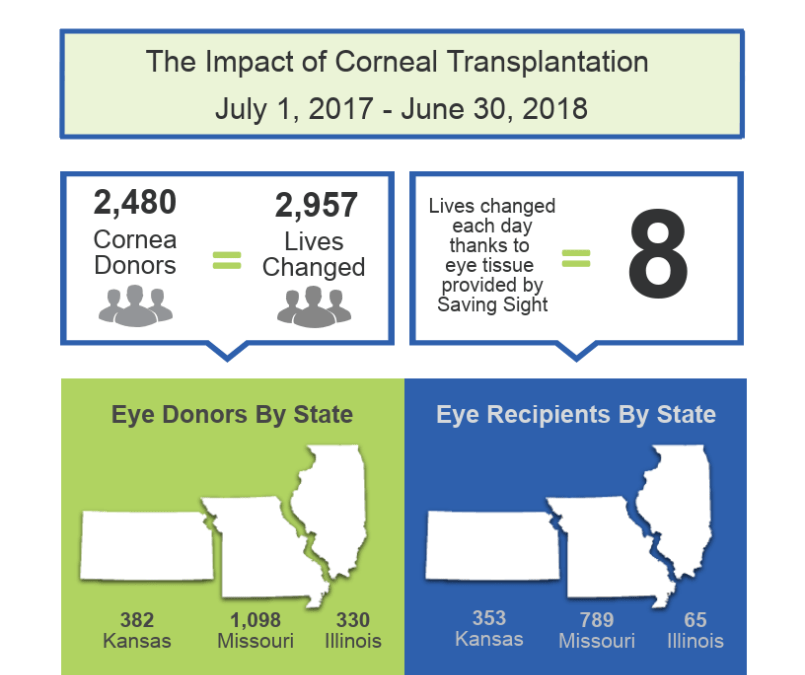 Saving Sight by the Numbers | The Impact of Eye Donation