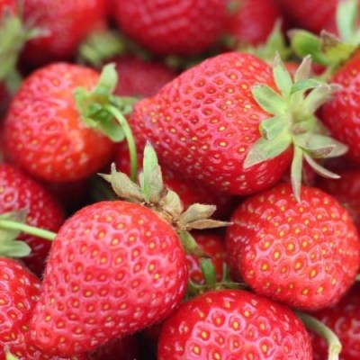 21 Amazing Strawberry Recipes