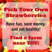 Frugal Summer Activities for the Kids – Pick Your Own Farms!  #FrugalSummerFun