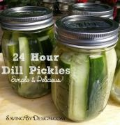 Easy 24 Hour Dill Pickles – Simple and Delicious!