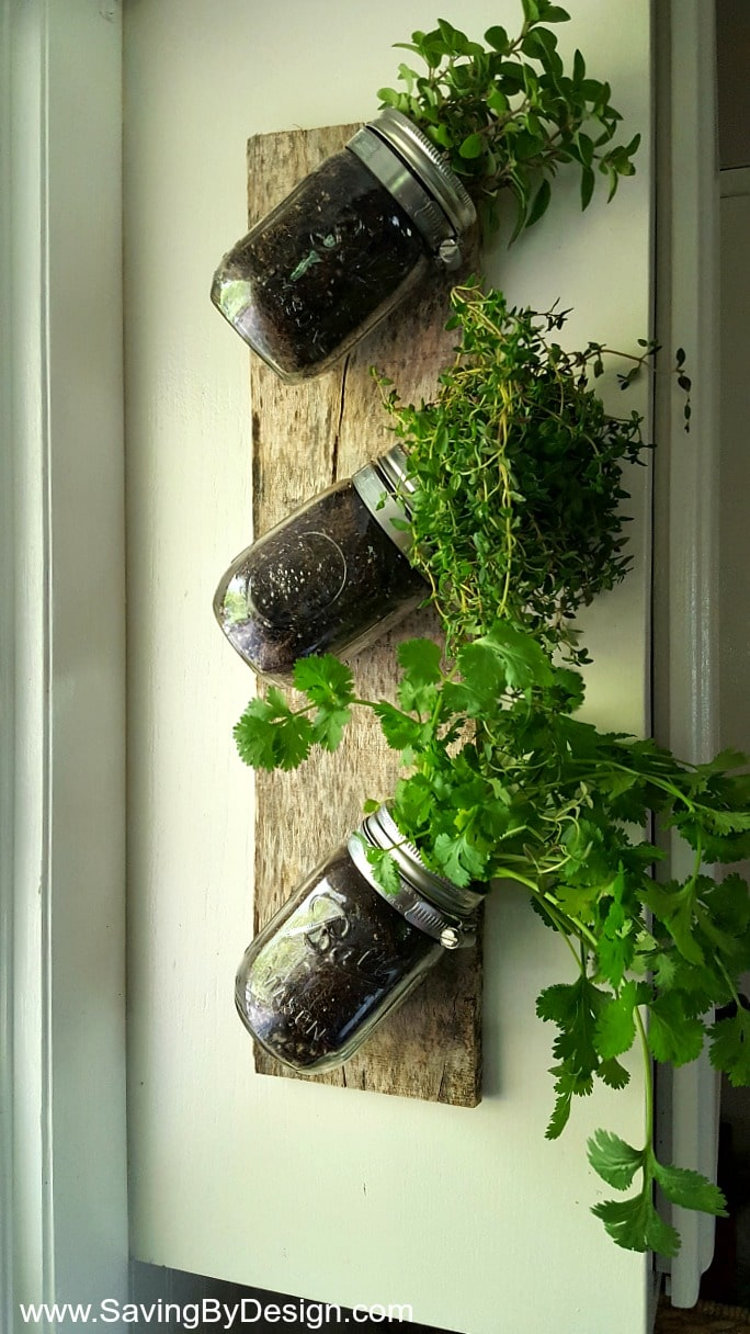 How To Make An Indoor Wall Mounted Herb Garden To Enjoy