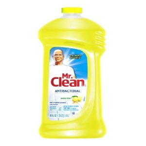 New Coupon – $0.75 off ONE Mr. Clean All Purpose Cleaner