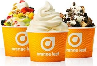 Free Froyo At Orange Leaf