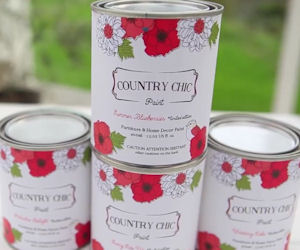 Free 4oz Sample Jar of Country Chic Paint