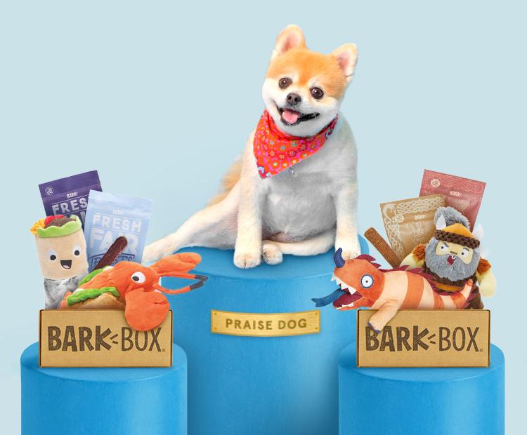 BarkBox on Sale for ONLY $5.00 (Reg. $22)