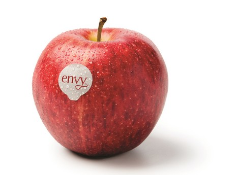 *RARE* Save $0.50 any ONE (1) Envy Apples Bulk Purchase
