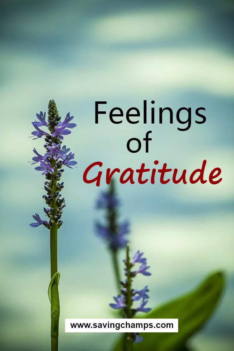Gratitude is a feeling of being thankful for what we receive, whether tangible or intangible. With gratitude, we recognize the goodness in our lives. | self-improvement, personal development, gratitude, positivity.