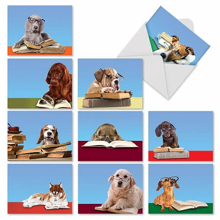 Best Gifts for Book Lovers_Reading Eye Dogs