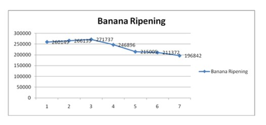 Saving energy on refrigeration Banana ripening