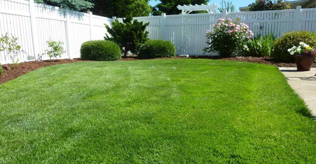 residential lawn services in Midland