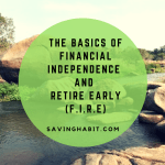 THE BASICS OF FINANCIAL INDEPENDENCE AND RETIRE EARLY (F.I.R.E)