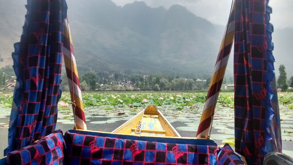 Boat ride at Dal Lake Kashmir