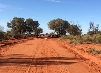 5 things you need to know about the outback now