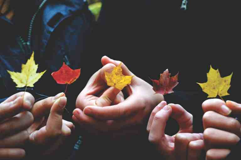 10 Simple Fall Crafts That Kids Can Do