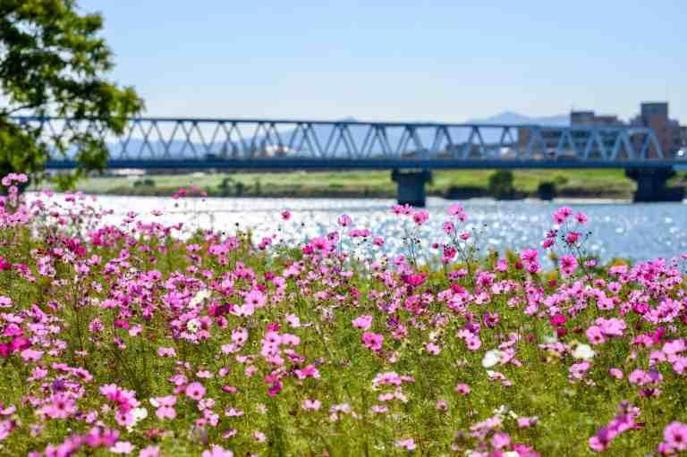 Kid-Friendly Spring Break Destination Ideas (outside the United States)