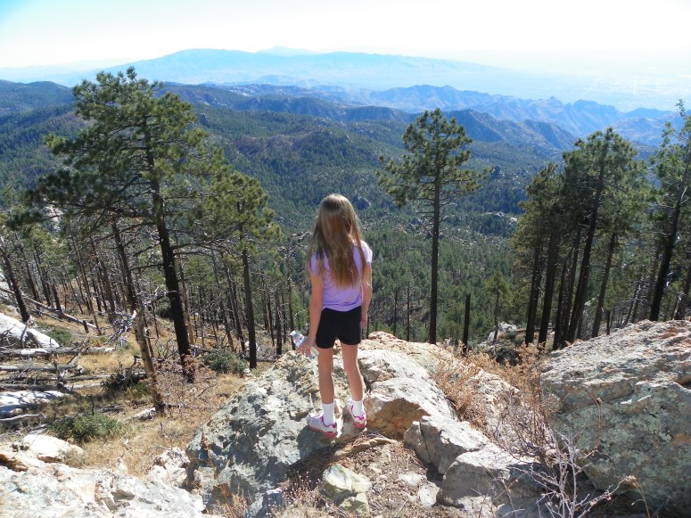 beautiful views on mount lemmon in tucson arizona