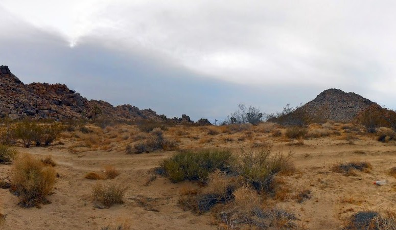 hiking and letterboxing outside of Joshua Tree National Park
