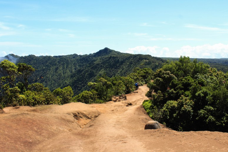 The Pihea Trail in Koke'e State Park (6 of 8)