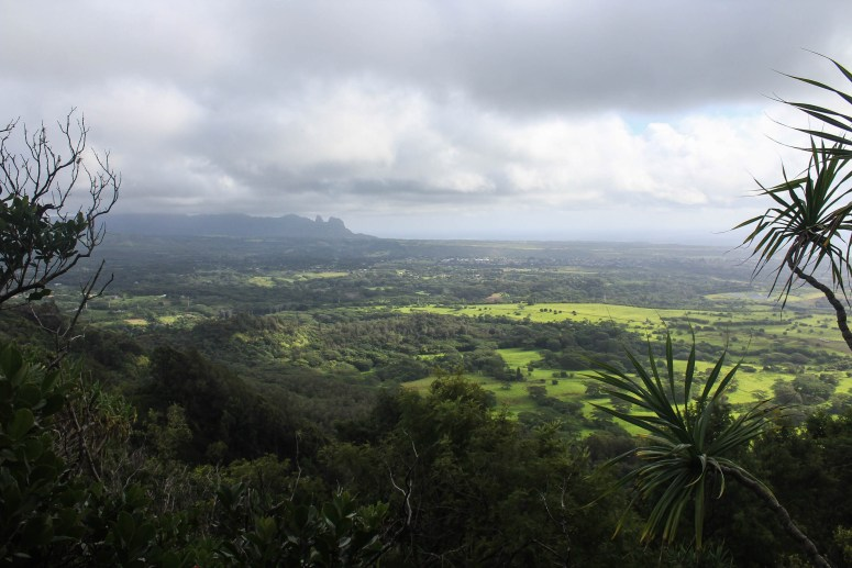 Trail guide for Nounou Mountain, aka Sleeping Giant Mountain on Kauai