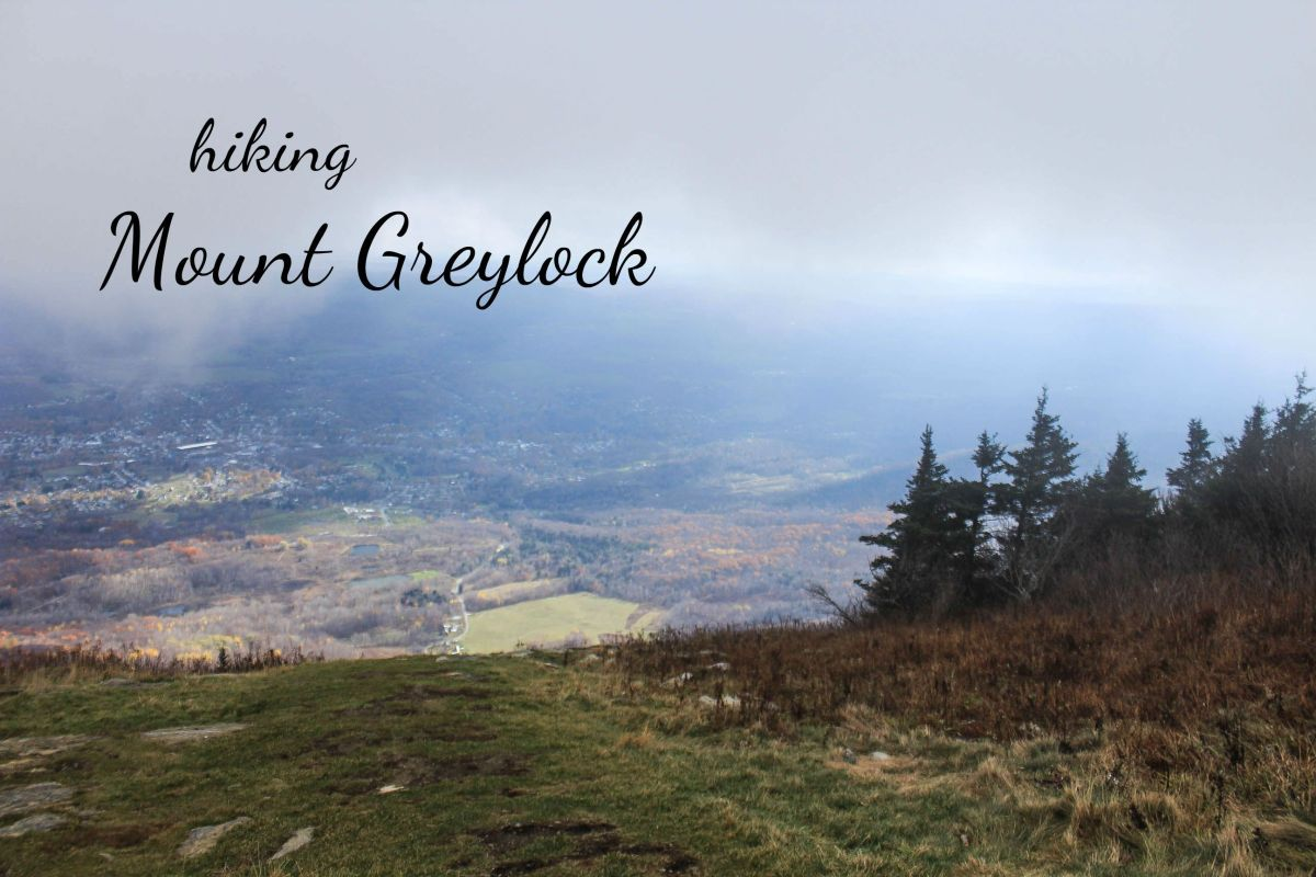 Hiking Mount Greylock