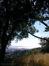 Grizzly Peak Berkeley toward San Francisco CA