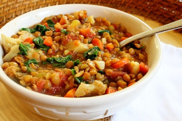 Slow Cooker Lentil Vegetable Stew