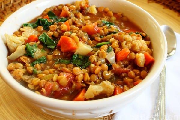 Slow Cooker Lentil Vegetable Stew