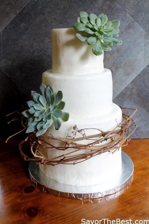 Vine And Succulent Cake Design Savor The Best