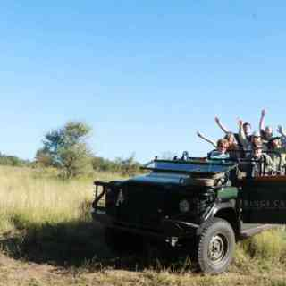 Our South African Safari
