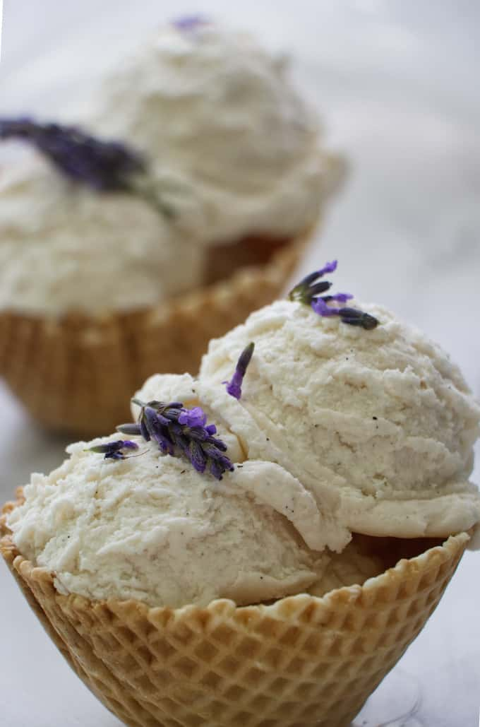No Churn Vanilla Lavender Ice Cream