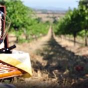 Umbrian wine and Sagrantino di Montefalco
