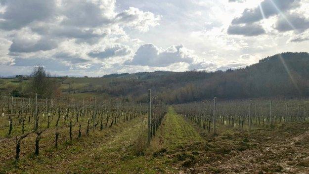 Montefalco in Umbria Italy