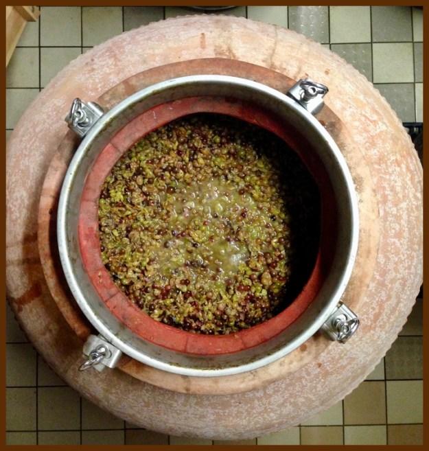 wine making amphorae chateau la baronne corbieres languedoc