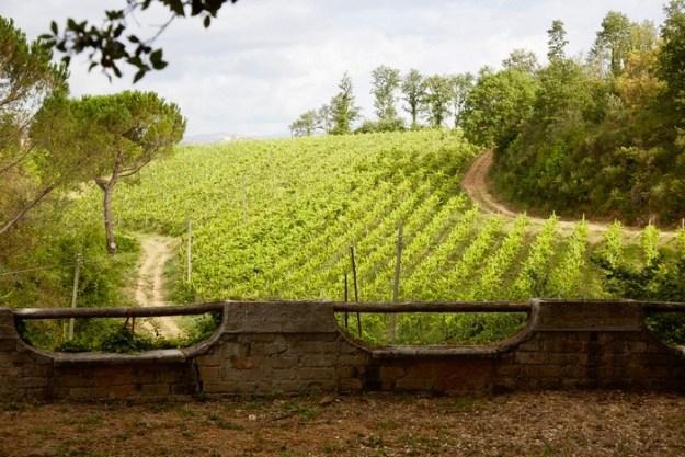 Lazio wine region Italy